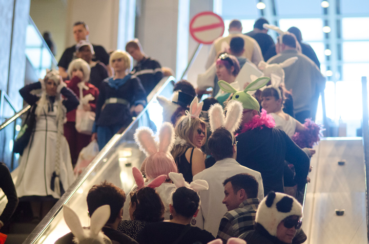 Dozens dressed like bunnies for a cross-town pub crawl during Bunnycon 2013 in Seattle Saturday March 30, 2013. Some parted ways to flash mob at Sakura-Con at the Washington State Convention Center.